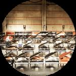 Piano Storage Service